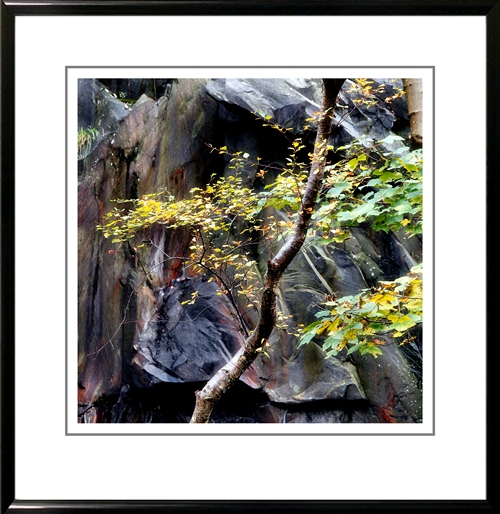 Looks good in a frame that echoes the shiny look of the wet rock.